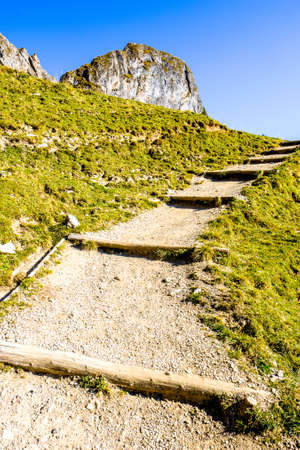 old wooden steps at a trail