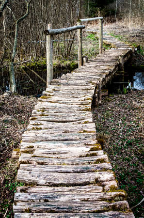 old wooden footpath at a forest