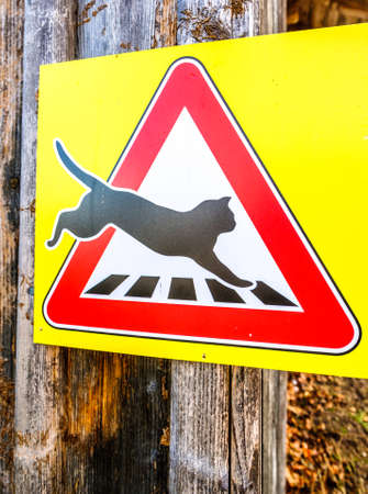 beware of cats sign - photo