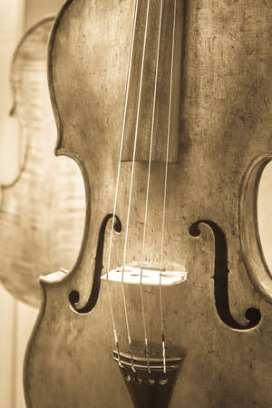 old music instrument - violin - closeup - photo