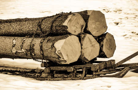 old transport sled with trees