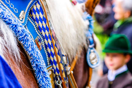 decorated horse at a pilgrimage