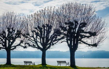 bench at a park in bavaria Standard-Bild