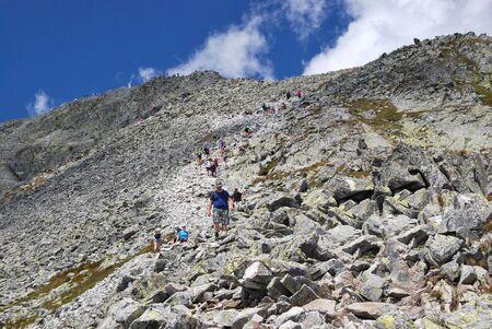 mountaintop: Road to the Mountain Peak