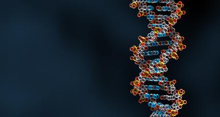 3D Rendering of DNA Helix