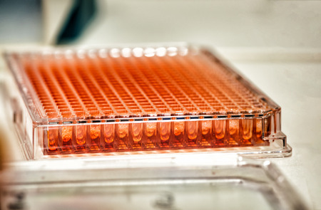 Microplate for micropipette used in biochemistry
