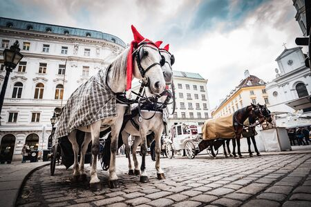 Vienna, Austria - December 10 2018: Horse-drawn carriage on a square downtown next to Hoffburg palace