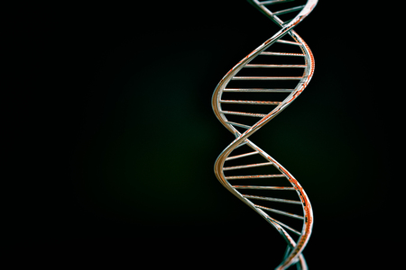 DNA double helix, red glossy material, dark background Stock Photo