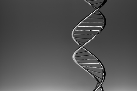 DNA double helix, grey glossy material, dark gradient background
