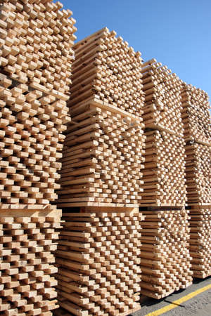 forest products: Lumber being processed at a forest products sawmill-pallets