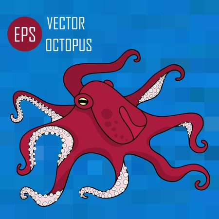 tentacles: Vector illustration of octopus ocean (octopus and tentacles) Illustration