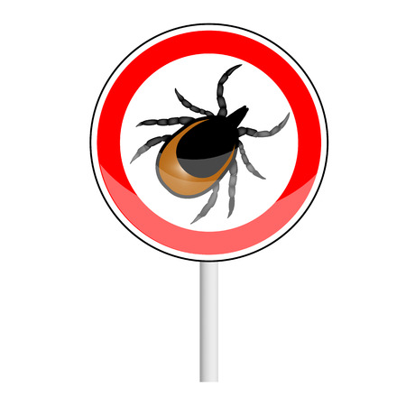 encephalitis: vector image of a tick - a warning about the risk of Contracting a tick-borne encephalitis