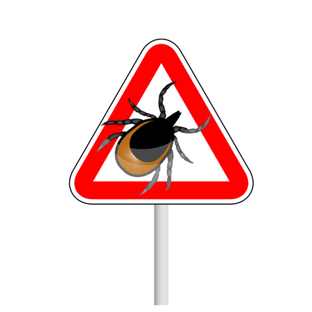 caution sign: vector image of a tick - a warning about the risk of Contracting a tick-borne encephalitis