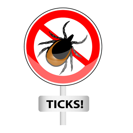 lyme disease: vector image of a tick - a warning about the risk of Contracting a tick-borne encephalitis