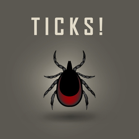 borreliosis: vector image of a tick drunk the blood - tick stop sign