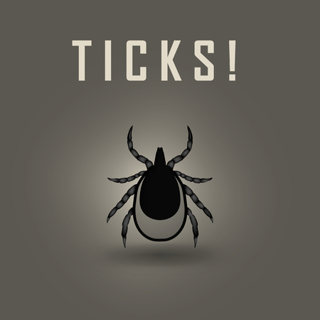 lyme: vector image of a tick stop sign