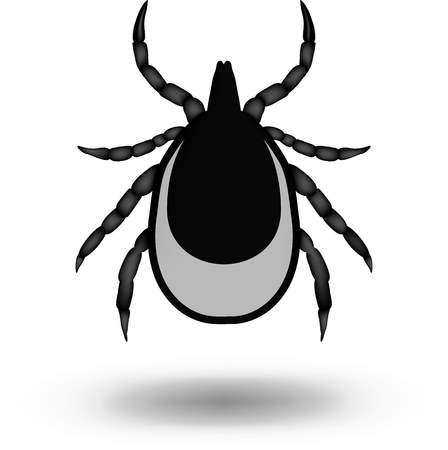 borreliosis: vector image of a tick