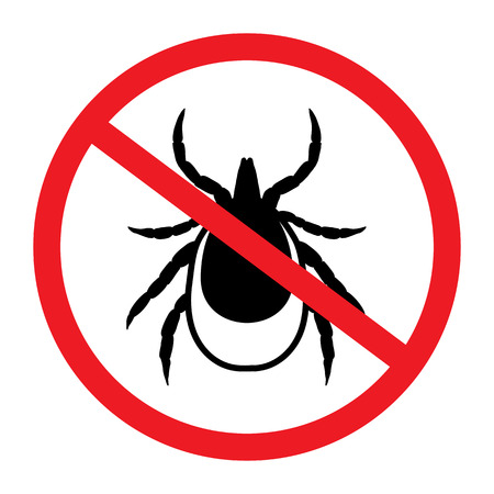 lyme disease: vector image of a tick in a red crossed-out circle - tick stop sign