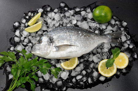 sparus: Dorado fish lying on  ice cubes, salt, parsley lime and lemon. Top view Stock Photo