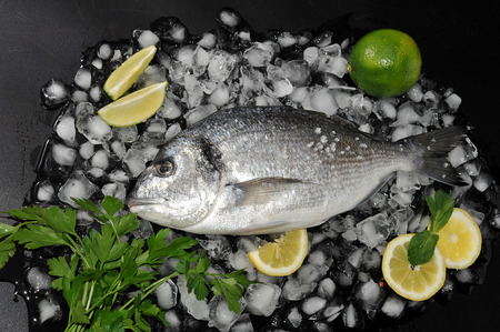 gilthead: Dorado fish lying on  ice cubes, salt, parsley lime and lemon. Top view Stock Photo