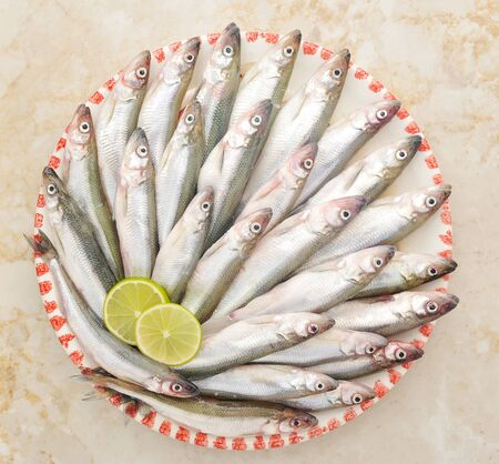 smelt: Fresh European smelt fishes with lime on dish view Stock Photo
