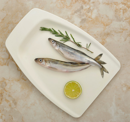 smelt: Fresh European smelt fishes with lime and rosemary - top view