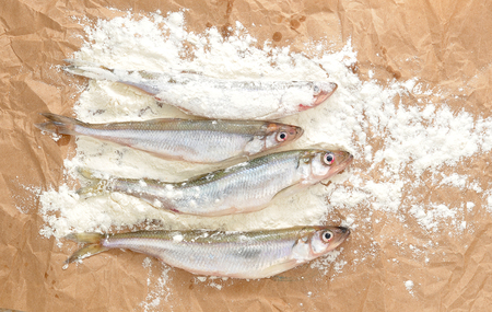textille: Fresh European smelt fishes Stock Photo