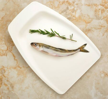 Fresh European smelt fish with rosemary - top view