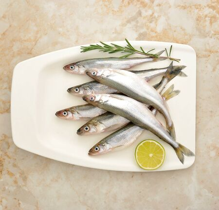 Fresh European smelt fishes with lime and rosemary - top view