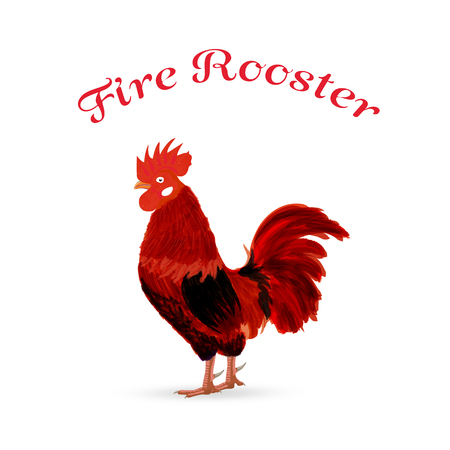 according: Fire red rooster - a symbol of new year 2017 according to the Chinese calendar. Vector illustration of cute rooster. cartoon vector illustration