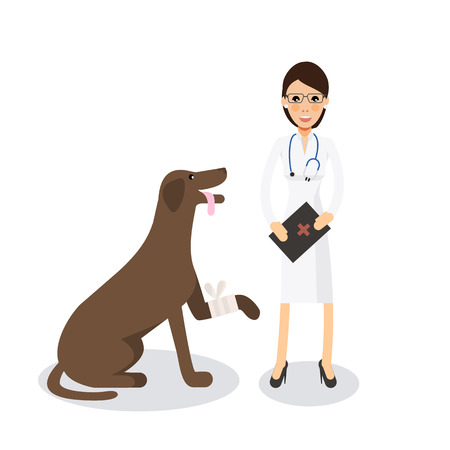 doctor appointment: Cute female veterinarian doctor with dog. Veterinary concept colorful icon on white background. Vector character  illustration in flat style