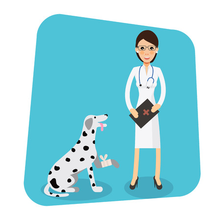 doctor appointment: Cute female veterinarian doctor with dog. Veterinary concept colorful icon on light blue background. Vector character  illustration in flat style Illustration