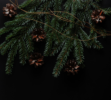 Christmas background with spruce twigs and cones on black background with place for text and greetings - top view Reklamní fotografie