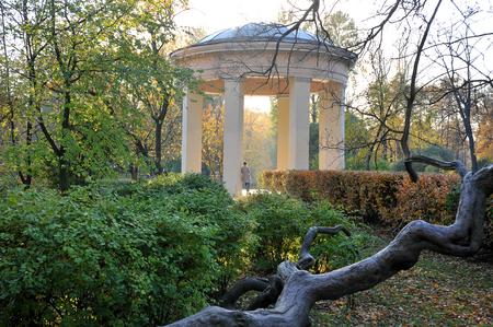 autumn landscape - Park with fallen leaves, snags and rotunda Archivio Fotografico