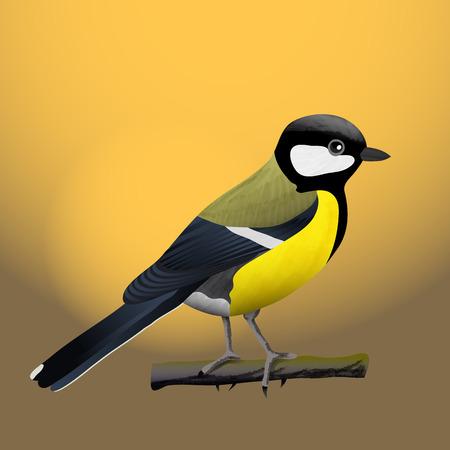Ilustración de vector de pájaro tit