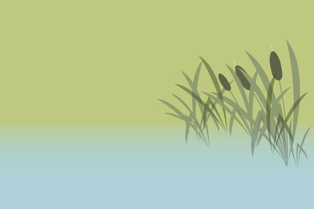 neutral background - the lake and the reeds - vector illustration