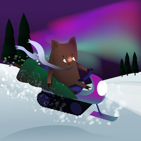 cute boar on a snowmobile rides through the Christmas forest with a Christmas tree on the background of the Northern lights - pig vector character illustration