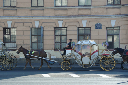 St. Petersburg, Russia - August 17, 2019: horse carries a beautiful cart through the streets of St. Petersburg