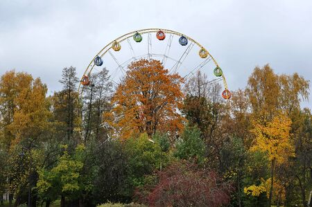 autumn in the amusement Park-observation wheel and autumn trees with autumn leaves