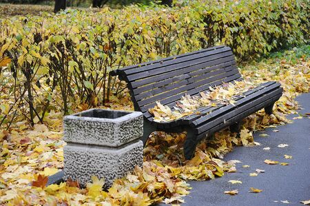 bench with autumn Park with autumn leaves Stockfoto