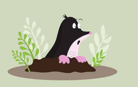 Mole looks  in surprise. Cartoon humor illustraion