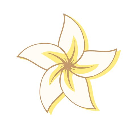Tropical Magnolia flower in cartoon style. aromatherapy flower on white background. Items for fragrance and Spa treatments