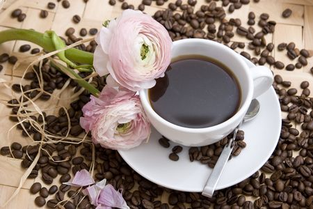 buttercup flower: Coffee theme. High resolution image with coffee and flower.