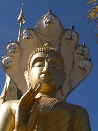 Buddha statue Cliffs The park photo