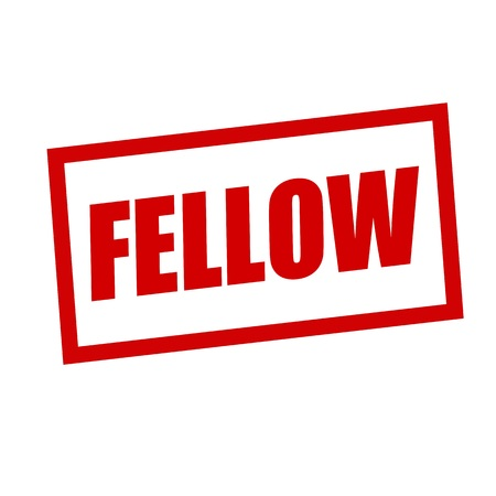 fellow: fellow red stamp text on white Stock Photo