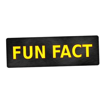 fact: Fun fact yellow wording on black wood background Stock Photo