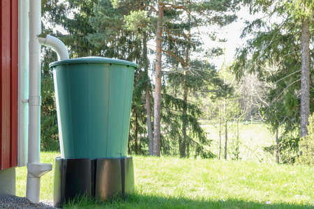 Water reservoir. A large plastic barrel that collects rainwater.