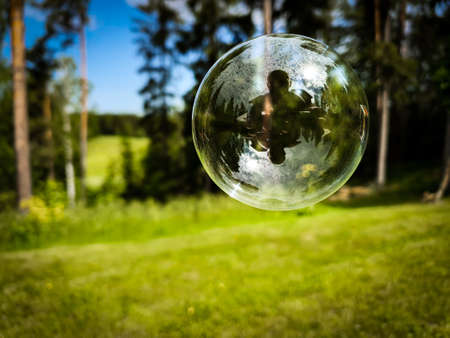 Soap bubble with green nature forest in the background