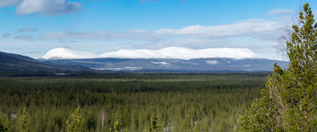 Forest landscape with dramatic snowy mountains in the background. Sonfjället, Sweden. Panorama