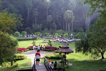 botanic: Botanic garden
